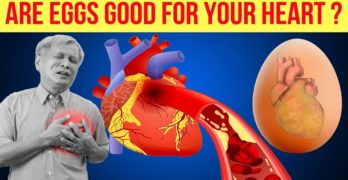 What Happens to your Heart Health If You Take an Egg Daily