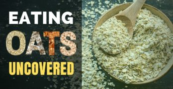 Eating Oats Uncovered and Why You Must Try Oatmeal Everyday